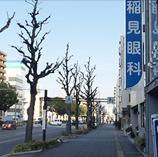 国道19号線・伏見通り沿いに位置する橘店